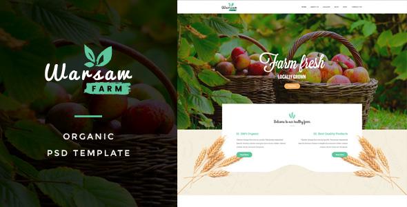 Warsaw : Organic Fruits & Vegetables PSD网页模板